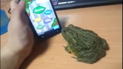 Вижте как може да вбесите жаба
