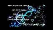 Ork. Nazmier- Sen Canimsin 2014 Album