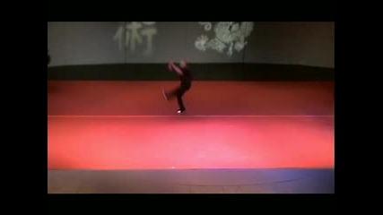 Stanford Wushu