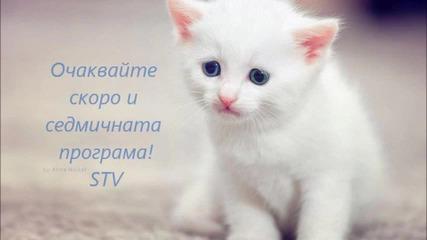 канал Stv !