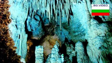 Музикалната пещера на нощните птици
