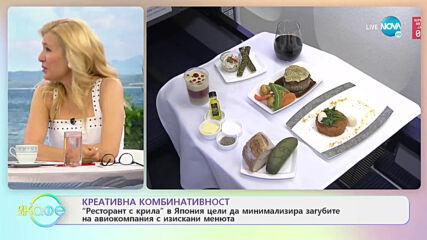 """Осем самолета по света, които се превърнаха в ресторанти - """"На кафе"""" (10.05.2021)"""