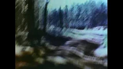 Аукцыон - Дорога