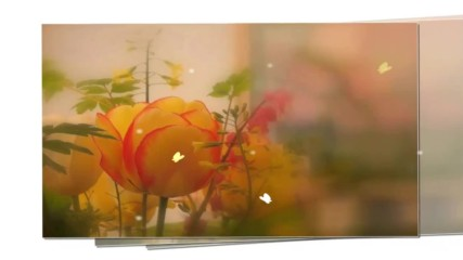 Цветовете на пролетта - оранжеви лалета! ... (music by Tim Janis