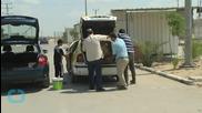 Gaza Family's Pet Lions En Route to Jordan Sanctuary...