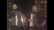 Dobrivoje Topalovic - Blago vodi sto te mije
