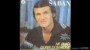 Saban Saulic - Ne placi dobri domacine - (Audio 1981)
