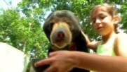 """Животинският свят на о-в Бали (""""Без багаж"""" еп.92)"""