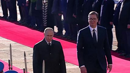 Serbia: Oops! Putin and Vucic accidentally 'snub' delegations at welcoming ceremony
