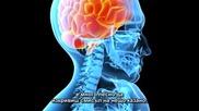 Контрол На Съзнанието -- 2