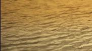 Сенна хрема - Chill Out - видео шоу