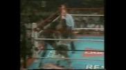 Mike Tyson vs. Lorenzo Canady 1985