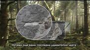Bbc Планетата на динозаврите 2 епизод - 1/2