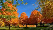 Шикарные Песни Осень