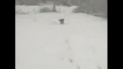 Choisa - Сноубордист 3