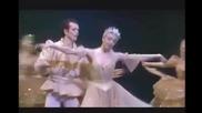 Swan lake Paris Opera 8