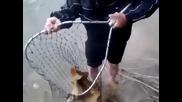 Ето какво е да си майстор на риболова !