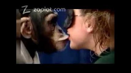 Момичетa Се Целуват С Маймуна