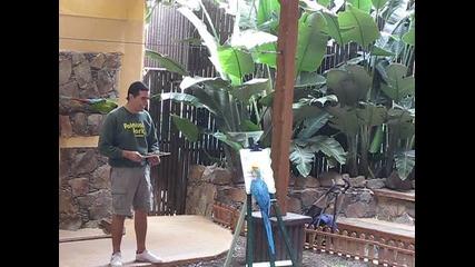 Папагал се рисува сам !!!