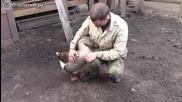 Любов между човек и гъска