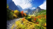 Вятърко листи в гората пилей- Есен в гората..