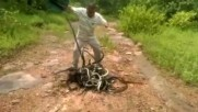 285 змии пуснати на свобода едновременно