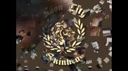 Ruction - Lion City Skinhead