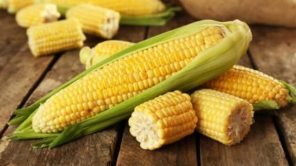 Любопитни факти за царевицата