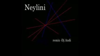 Neylini - Muleina (remix Dj Andi) Румънски