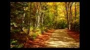 Richard Clayderman - Love Story