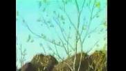 Пролет иде - Детска песничка