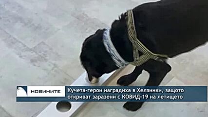 Кучета-герои наградиха в Хелзинки, защото откриват заразени с КОВИД-19 на летището