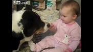 Сладко бебе споделя зърнената си закуска с куче