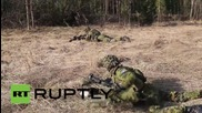 Estonia: See final day of NATO 'Tornado' drills before 'Siil 2015' war games