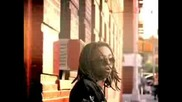 Lil Wayne - Bird Cal