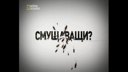 Табу- гледайте в сайт http://filmi.ovo.bg/