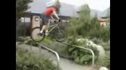 Tarty Bikes