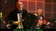 Biljana Jevtic - Obrase se vinogradi -