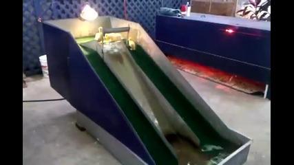 Малки патета се забавляват с водна пързалка