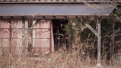Japan: Grim view of abandoned buildings in Okuma ahead of 10th anniv of Fukushima nuclear disaster