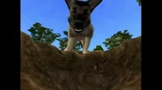 Ea Games Sims 2 Pets Dig