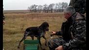 Това се казва приятел - Ловно куче донася ракията на ловеца