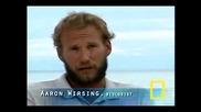 Dugongs Vs. Tiger Sharks