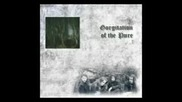 Gorgitation of the Pure - Gorgitation of the Pure - Full Album 2007