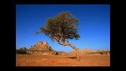 Пясъкът на Африка - Ирене Фарго