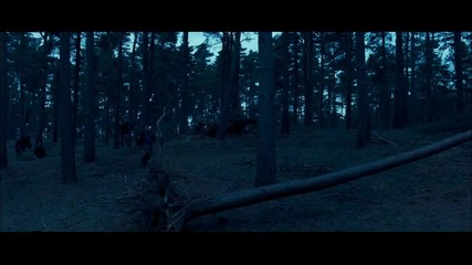 Harry - Potter - and - the - Deathly - Hallows - Hd - Teaser - Trailer - 1080p - Hd