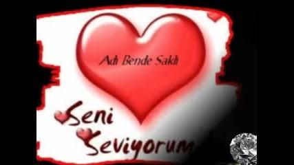..: Seni Seviyorum :