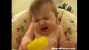 Bebe Qde Limon