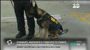 В САЩ купуват бронирани жилетки на полицейските кучета