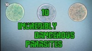 10 Невероятно опасни паразити...